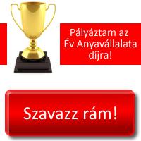 Rongylady Az év anyavállalata 2015 versenyen